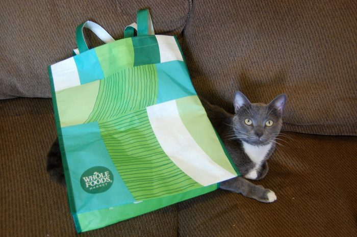 cat under a reusable shopping bag